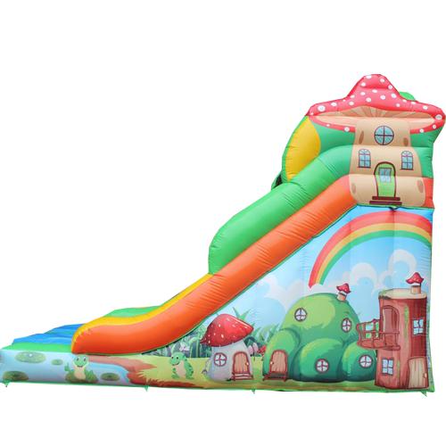 Acheter le château gonflable tobogan Grenouille